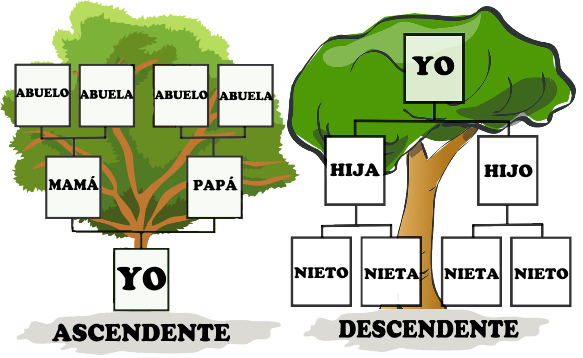 mi arbol genealogico