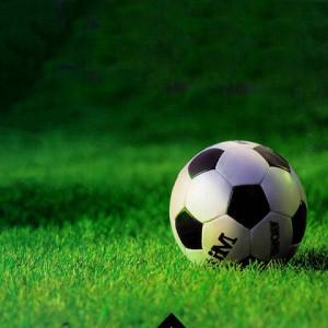 Fútbol: la selección que pudo ser